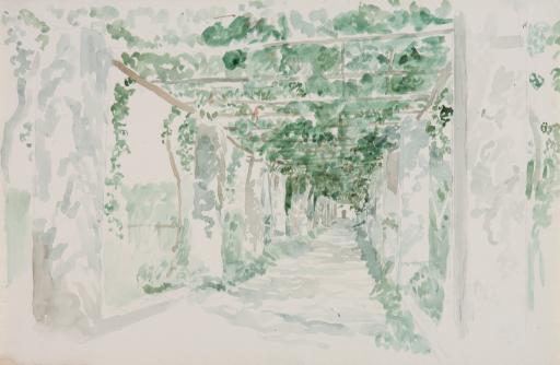 Терраса, обвитая виноградом