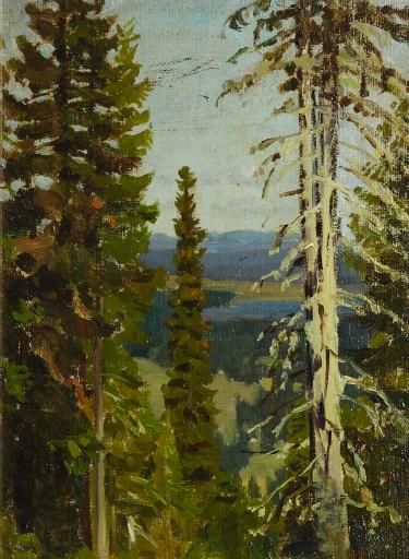 Лес на горе Благодать